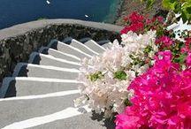 Stairs I wish to climb