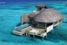 Rejser til Maldiverne / Nyhavn Rejsers Maldiverne er håndplukkede rejser til luksushoteller på eksotiske øer med den bedste beliggenhed. På vores rejser til Maldiverne kan I opleve ægte forkælelse med gastronomi, høj service, spabehandlinger, snorkling og dykning ved farverige koralrev. Det er rejser med høj kvalitet for pengene takket være eksklusive aftaler på Maldiverne opbygget over mange års samarbejde