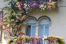 Okna,dveře,kliky