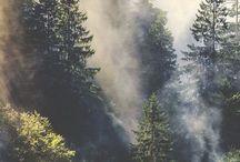 adventure,nature