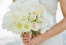 Bride / by Lyubava Crochet