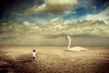 Surrealism 1