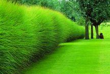 garden... garten / garten ... gartengestaltung ... gartenideen ... lineare moderne gärten garden minimal clean