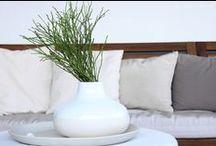 flowers... blumen... fiori ... plants / zimmerpflanzen ... dekoration ... decoration ... interior