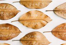 autumn...herbst...autunno