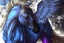Fotografie z magicznymi koniami