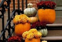 Fall Crafts / by Wholesale Supplies Plus