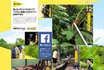 web design / by Vivian Ong