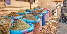 Marrakesch Reisen / Travel / Reisefotos und Reisetipps rund um die farbenfrohe, marrokanische Stadt Marrakesch