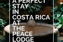 Hotel Reviews / Hotel Reviews