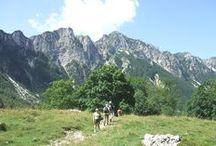 Piccole Dolomiti: trekking tra le leggende / Una vacanza trekking nelle Piccole Dolomiti. Faremo belle passeggiate ed escursioni nell'Anello Ecoturistico delle Piccole Dolomiti.