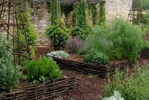 P O T A G E R   |   K A I L Y A R D / Kitchen Garden Splendour  / by Sound Of The Wind Blowing - Dalagooroo