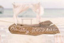 Driftwood to inspire
