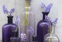 Cretan Lavender to inspire