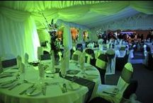 Annual Charity Gala Ball / Previous images and future ideas.