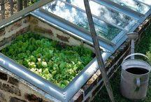 Kasvihuone ja keittiöpuutarha