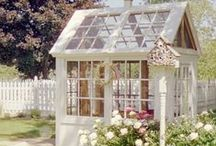 Gardening / Tips & tricks for gardening, garden shed ideas & garden ornament ideas!