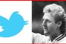 Larry Twitter bird