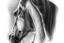 How to Draw Horses / Sketching and Painting Horses Tutorials and Reference Materials / by Theresa Ritter