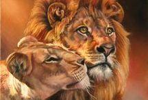 картин животных