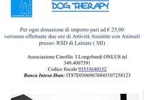 associazione ILongobardi Onlus / Progetti di Dog Therapy