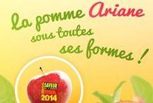 """Concours de recettes - La pomme Ariane sous toutes ses formes / Découvrez toutes les recettes déposées lors du #concours de recettes """"La pomme Ariane sous toutes ses formes""""."""