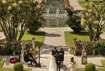 Wedding Ceremonies / Wedding Ceremonies presented by le Maestro