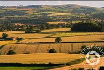 Lyth Hill / Pictures of Lyth Hill, near Shrewsbury in Shropshire, taken by John and Mike Hayward.