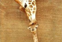 Natural cuteness / Cute, cuter, cutest!