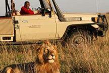 ► África
