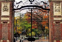 Harvard / a place I wish to go, if only in my dreams.