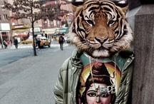 Tiger / / / / by Richard da Mota