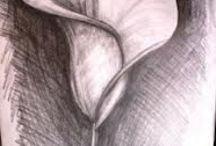 Drawing / Creativity, imagination....