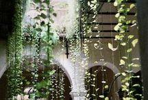 Outside/Extérieurs / terrasses, patios, jardins