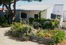 Location maison de vacances à Armona