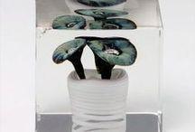 Finnish glass art: Oiva Toikka, annual cube/vuosikuutiot