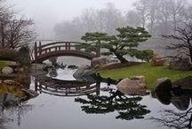 hiljaisuuden puutarha / garden of silence