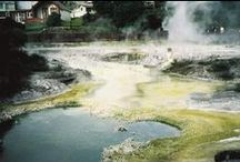 Geothermal / The natural geothermal wonders of Te Whakarewarewa Valley