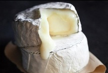 Cheese / Cheese, glorious cheese...