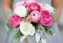 Someday Wedding... / Romantic Film Theme