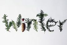 Winter / Christmas / Inspiration from Winter landscape and Christmas decor