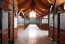 Dream Ranch/Stables / Imagine keeping your horses in the palace