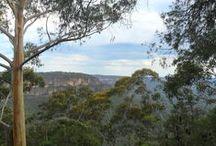New South Wales, Australia / June 2012