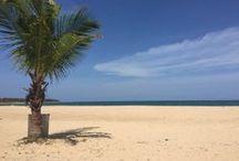 Sri Lanka / My Trip 2015
