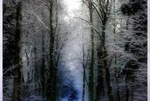 Joachim Sorgenfrei • 3D & Nature Art • Render / Alle Bilder & 3D © Joachim Sorgenfrei. All rights reserved. DrawlyzerArt #render #3d #poser #cinema4d #3dsmax #dazstudio #daz3d #natureart #nature #pictures #fotograf #photograph #tutorials Free tutorials  Alle Inhalte dieser Seite finden Sie auch bei https://haeklen.com. Vielen Dank ❣☺