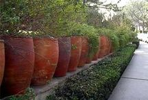 Planters and Containers