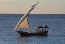 Zanzibar / Things to see in Zanzibar