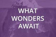 What Wonders Await