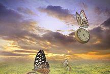 ■ Marcador de Momentos. / Las Mariposas no cuentan el Tiempo, viven los Momentos.