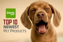10 Newest ~ Pets / 10 Newest Pets Products on iHerb (http://www.iherb.com/Pets) ~ New Customers can use Rewards Code PNT999 to get $10 off of a $40 minimum purchase or $5 off first time orders of less than $40. / by iHerb Inc